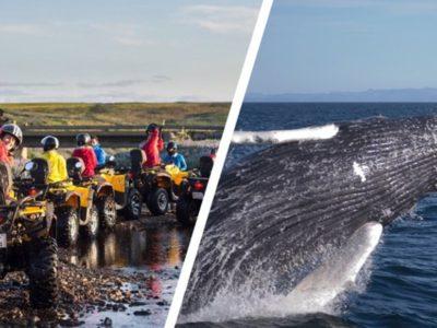 ATV Tour und Walbeobachtung in Reykjavik